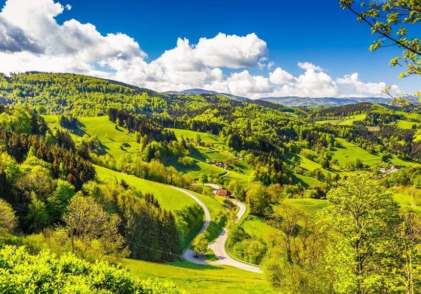 4.Schwarzwald