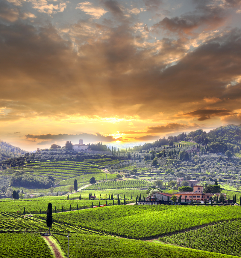 2)-Chianti-vineyard-landscape-in-Tuscany,-Italy